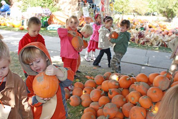 picking-pumpkins-2008-web-size