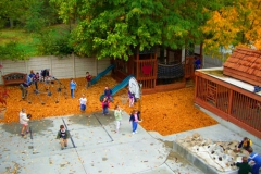 playground-fall-leaves-websize